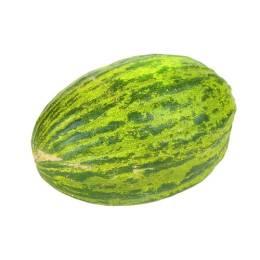 Melon Vert espagnol