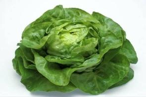 Salade Craquante