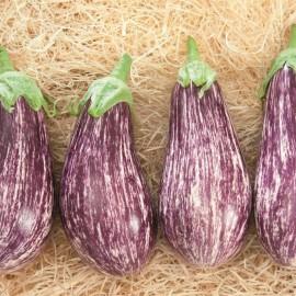 aubergine riado